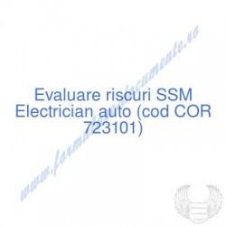 Electrician auto (cod COR...