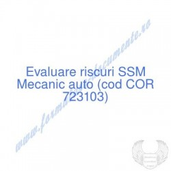 Mecanic auto (cod COR...