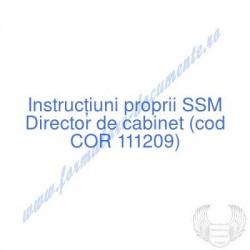 Director de cabinet (cod...