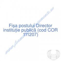 Director instituţie publică...