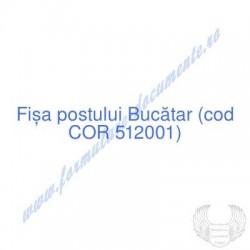 Bucătar (cod COR 512001) -...