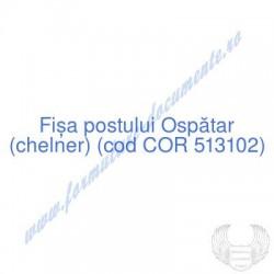 Ospătar (chelner) (cod COR...