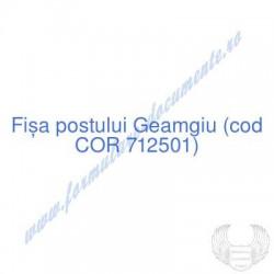 Geamgiu (cod COR 712501) -...
