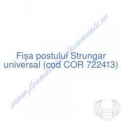 Strungar universal (cod COR...