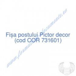 Pictor decor (cod COR...