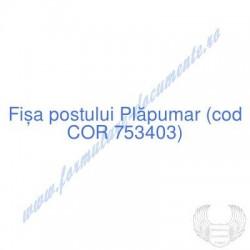 Plăpumar (cod COR 753403) -...