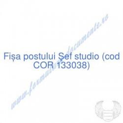 Şef studio (cod COR 133038)...