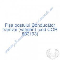 Conducător tramvai (vatman)...