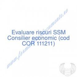 Consilier economic (cod COR...