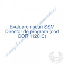 Director de program (cod...