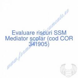Mediator școlar (cod COR...
