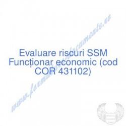 Funcţionar economic (cod...