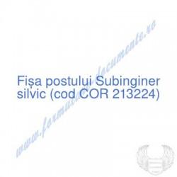 Subinginer silvic (cod COR...