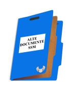 Alte documente SSM